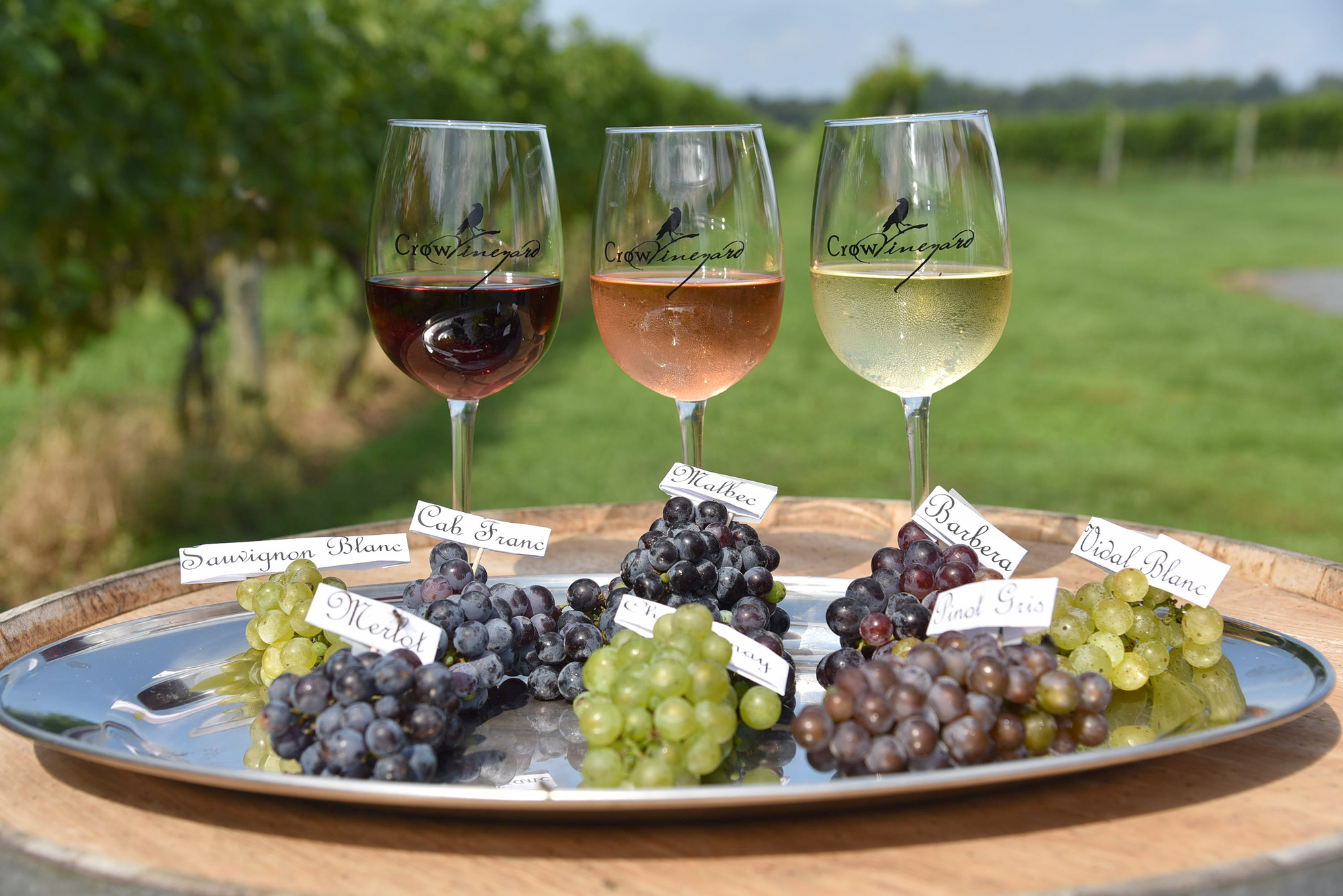 Crow Vineyard Grape Varieties