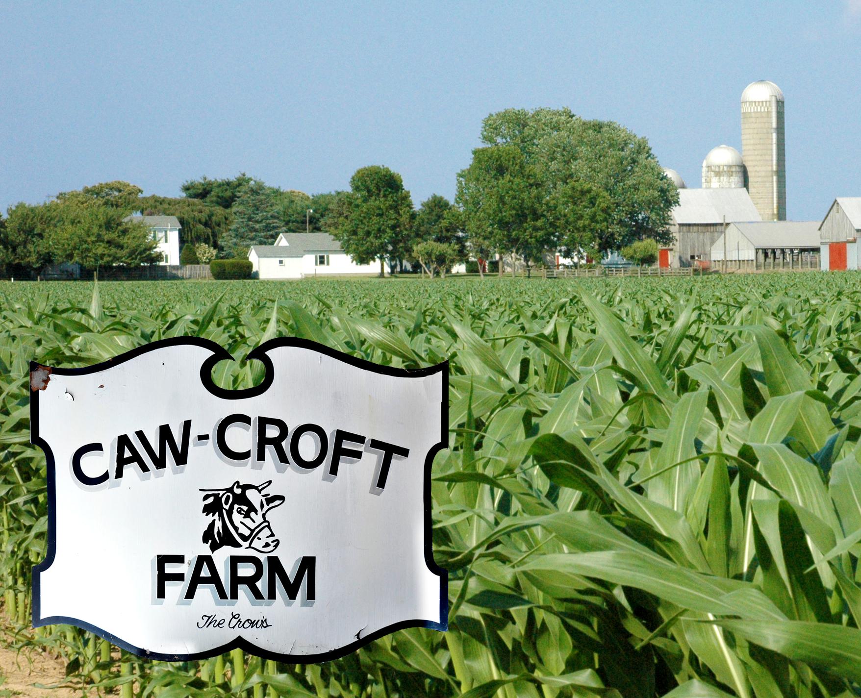 Crow Farm History