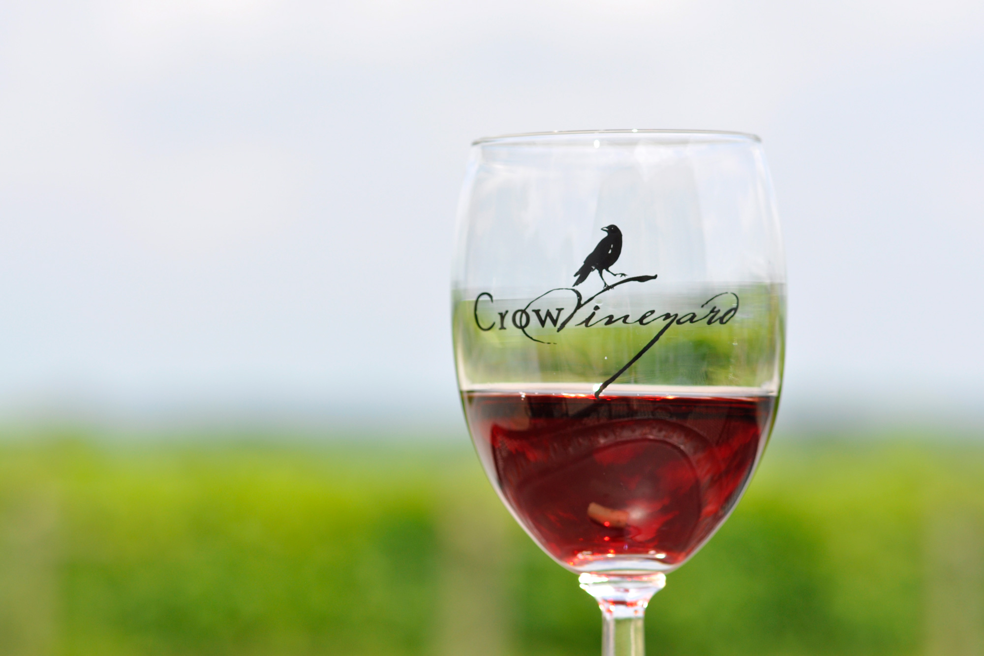 Crow Vineyard & Winery Barbera