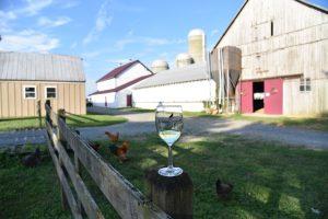 Crow Farm Vineyard & Winery